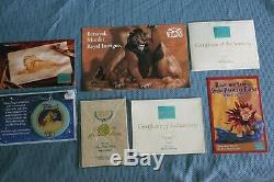 Wdcc Lion King Pals Pour Toujours Luau Timon Cartes D'ornement Et Wdcc Simba Nib